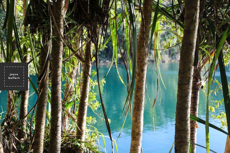 outdoor-photography-joyce-belfort-8184.JPG
